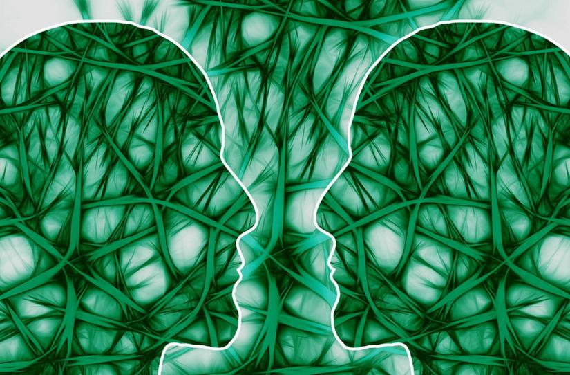 Constelações cerebrais e os transtornos mentais