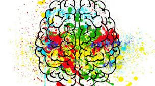 cerebro-pensativo-cerebro-reflexivo-Nova-Medicina-Germânica