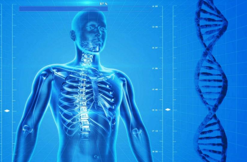 O conteúdo biológico na Nova Medicina Germânica