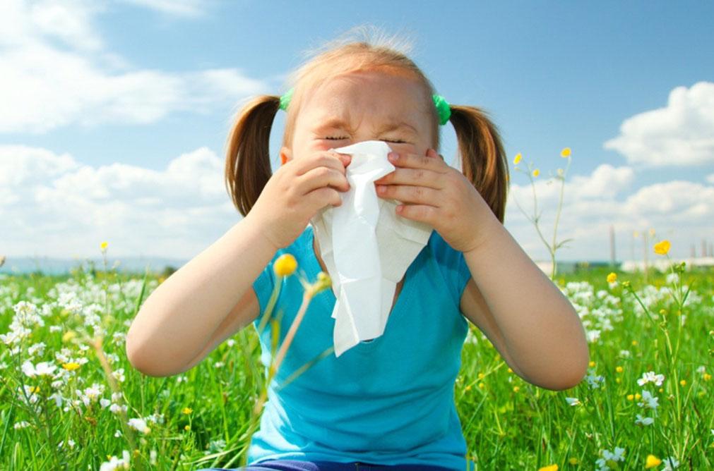 Como curar alergias segundo a Germânica Heilkunde