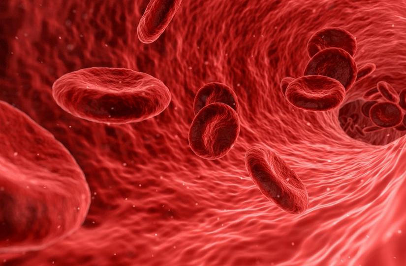 A anemia sob a visão da Medicina Germânica